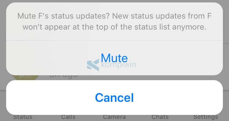 Cara Mute/Matikan Status/Story WhatsApp Orang Lain di iPhone 5